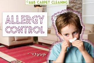 Allergy Control - Stable Brooklyn 11218